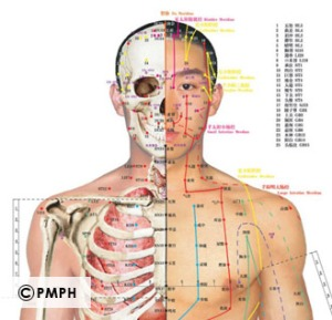 Front-Acupuncture-PMPH